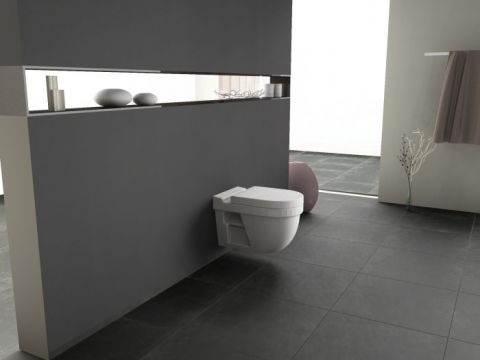 aqua bagno h nge wand wc 39 s auch als taharet dusch wc. Black Bedroom Furniture Sets. Home Design Ideas