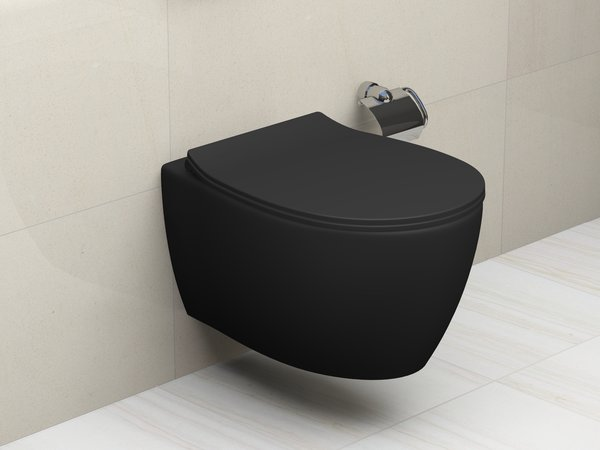 Aqua Bagno spülrandlose Toilette Hänge WC anthrazit matt inkl. Softclose Deckel