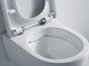 WC / Toilette oder Dusch-WC günstig online kaufen bei ...